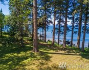 293 Marine Dr, Point Roberts image