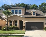11604 Quiet Forest Drive, Tampa image