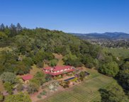 2491 Spring Mountain Road, St. Helena image