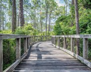 TBD Half Hitch Lane Unit #Lot 180, Santa Rosa Beach image