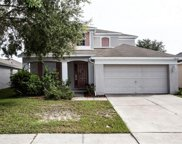 11630 Tropical Isle Lane, Riverview image