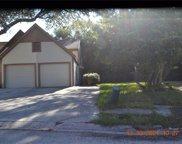16108 Dawnview Drive, Tampa image