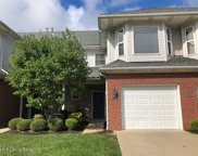 13608 Pinnacle Gardens Cir, Louisville image