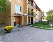 2400 West Talcott Road Unit 228, Park Ridge image