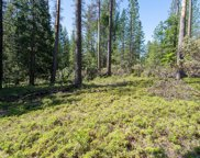 0  3.4 Acres Huggy Bear Lane, Grizzly Flats image