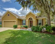 15818 Starling Water Drive, Lithia image