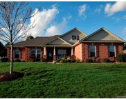 2959  Tallgrass Bluff Boulevard, Rock Hill image