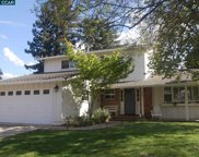 3505 Tupelo Dr., Walnut Creek image