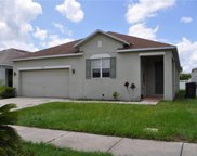 11180 Golden Silence Drive, Riverview image