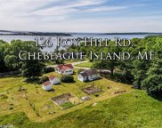 126 Roy Hill RD, Chebeague Island image