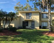 9013 Pebble Creek Drive Unit 9013, Tampa image