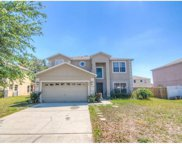 406 Big Sioux Court, Poinciana image