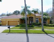 11912 Marblehead Drive, Tampa image