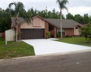220 Red Maple Drive, Kissimmee image