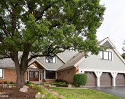 5421 North Tall Oaks Drive, Long Grove image