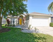 17729 Pebble Creek Court, Clermont image