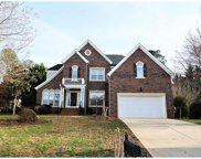 113  Lachlan Drive, Fort Mill image
