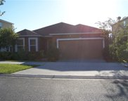 379 Red Kite Drive, Groveland image