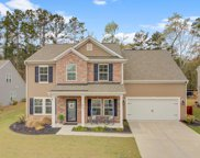 217 Gazania Way, Charleston image