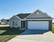 232 Mckenzie Court, Lexington image