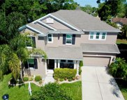6910 Rocky Canyon Way, Tampa image