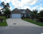 1117 Raven Cliff Ct., Conway image