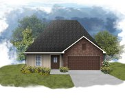 24230 Cliftmere Ave, Plaquemine image