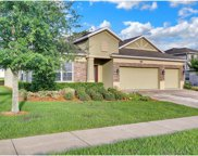 11604 Old Quarry Drive, Clermont image