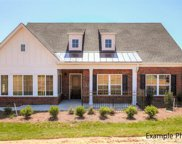 124  Adelaide Way Unit #47-D.II, Rock Hill image