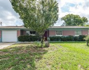 10209 N Valle Drive, Tampa image