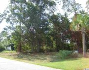 Lot 39 Cayman Loop, Pawleys Island image