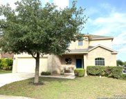 10827 Pansy Path, Helotes image