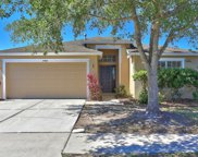 31403 Philmar Lane, Wesley Chapel image