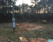 545 Miller Dr Unit 1, Pell City image