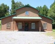 18805 Hwy 11 Unit 2.7 Acres, Steele image