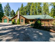 49585 MOUNTAIN VIEW  RD, Oakridge image