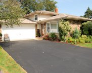 10864 Liberty Grove Drive, Willow Springs image