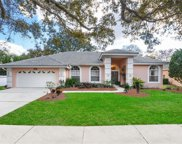 5011 Londonderry Drive, Tampa image