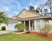 10155 Rivers Trail Drive, Orlando image