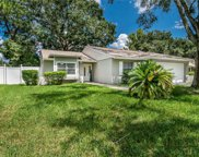 17541 Willow Pond Drive, Lutz image