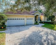 10310 Carroll Cove Place, Tampa image