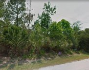 89 White Hall Dr, Palm Coast image