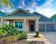 8742 Peachtree Park Ct, Windermere image