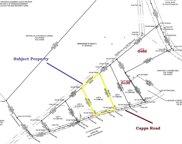 03 Capps Road, Walhalla image