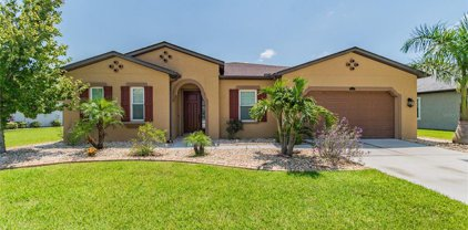 13313 Fawn Lily Drive, Riverview