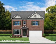 422 Willow Tree  Drive Unit #67, Rock Hill image
