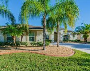 20254 Ravens End Drive, Tampa image