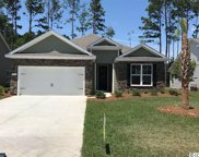 100 Laurel Hill Place, Murrells Inlet image
