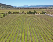 6696 Finnell Road, Yountville image