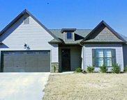 259 Laurel Trace Circle, Piedmont image